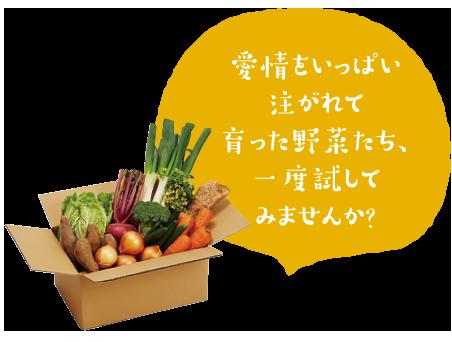 五島の野菜便